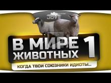 В Мире Животных #1. Когда твои союзники полные идиоты...(+18)