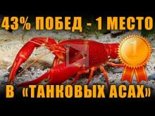 43% Побед и ПЕРВОЕ МЕСТО В ТАНКОВЫХ АСАХ [ World of Tanks ]